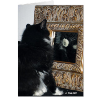 Mr. Bootee, thru the Looking Glass Card