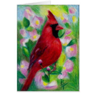 Mr. Cardinal Blank Card