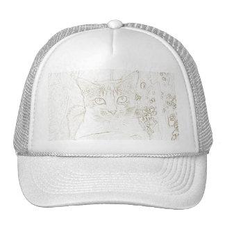 Mr. Cat Hat