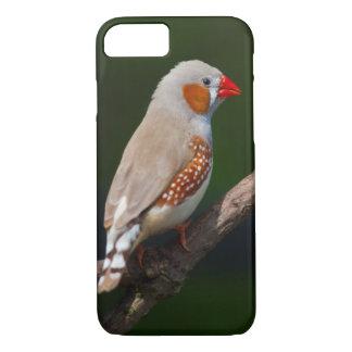 Mr Finch iPhone 8/7 Case