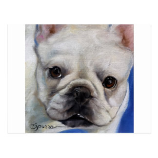 """Mr. French"" french Bulldog frenchie art painting Postcard"