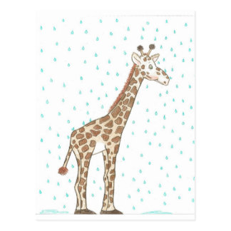 Mr Giraffe Seattle Washington Post Cards