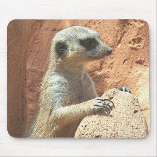 Mr Meerkat Mouse Pad
