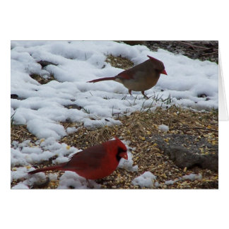 Mr.&Mrs. Cardinal Dining Card