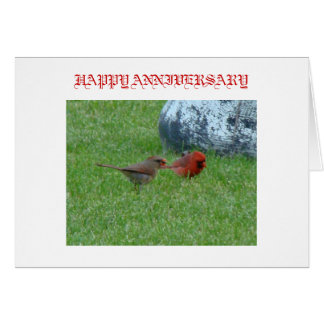 Mr. & Mrs. Cardinal, HAPPY ANNIVERSARY Card