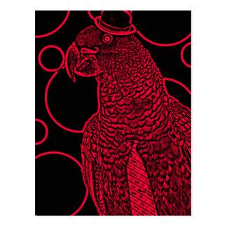 Mr parrot postcard