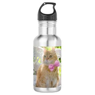 Mr. Perkins Proper Kitty 532 Ml Water Bottle