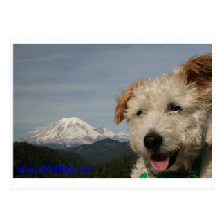 Mr. Pish Discovers Mt. Rainier Postcard