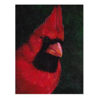 Mr. Red Cardinal Bird Art Postcard