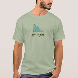 Mr. Right (angle) T-Shirt