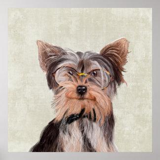 Mr. Yorkshire Terrier portrait Poster