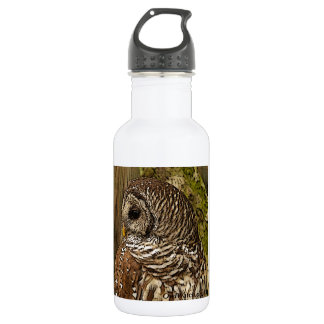 Mrs Barred Owl 532 Ml Water Bottle