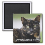 Ms. Sweetpea the Tortie Refrigerator Magnets
