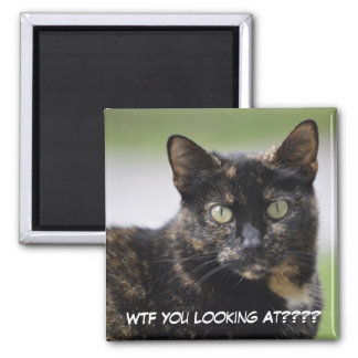 Ms. Sweetpea the Tortie Square Magnet