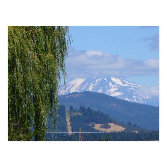 Mt Adams Postcard