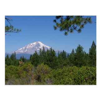 Mt. Baker, Washington State Postcard