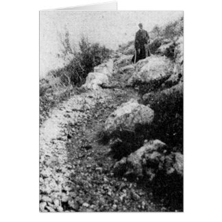 Mt. Carmel, trail near Shrine of the Bab ca. 1920 Card