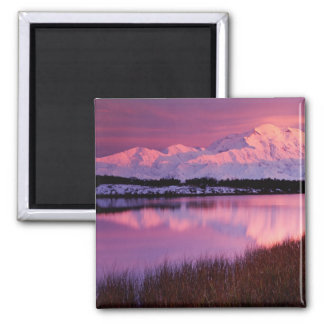 Mt. Denali at sunset from Reflection Pond Square Magnet