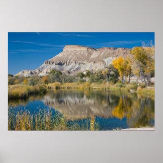 Mt. Garfield Seen from Riverbend Poster