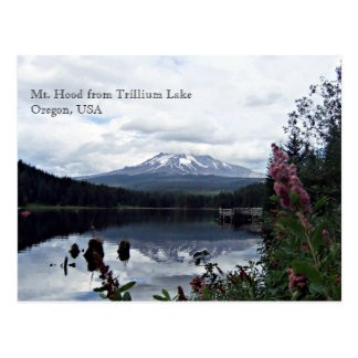 Mt. Hood from Trillium Lake Postcard