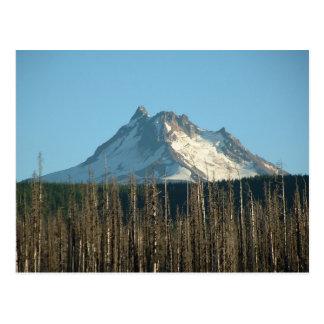 Mt. Jefferson from Olallie Lake, 2005 Postcard