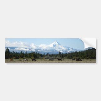 Mt. Jefferson Horses Bumper Sticker