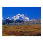 Mt . McKinley Denali National Park , Alaska. Postcard