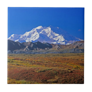 Mt . McKinley Denali National Park , Alaska Tile