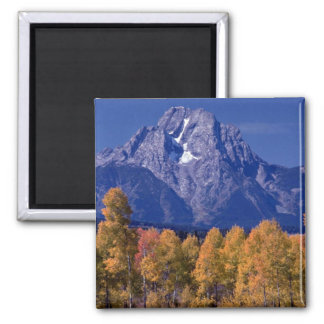 Mt. Moran, Grand Teton National Park, Wyoming Square Magnet