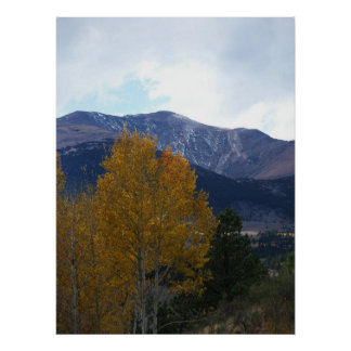 Mt Ouray Poster