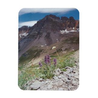 Mt. Sneffels Magnet