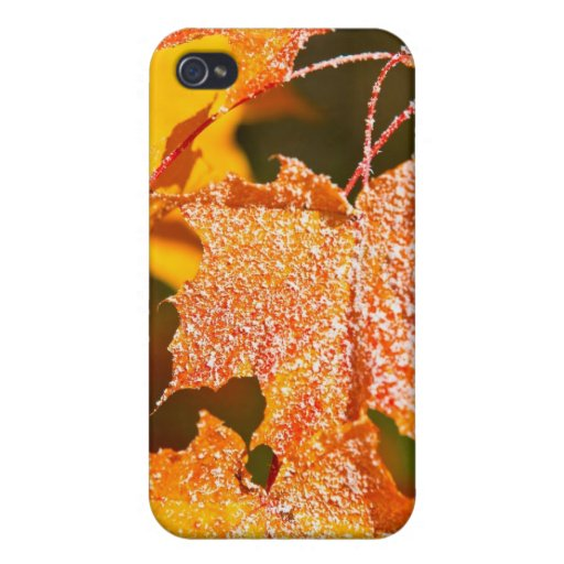 muddled maple leaves in autumn iPhone 4/4S cover