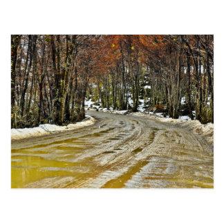 Muddy Dirt Road Postcard