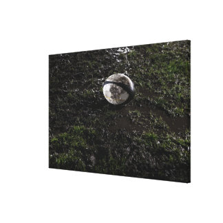 Muddy rugby ball sitting on a chewed up grass canvas print