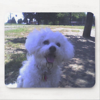 Muffie at the Dog Park Mouse Pad