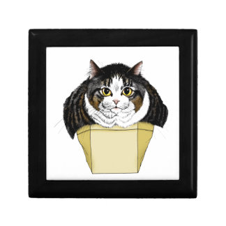 Muffin Top Cat Gift Box