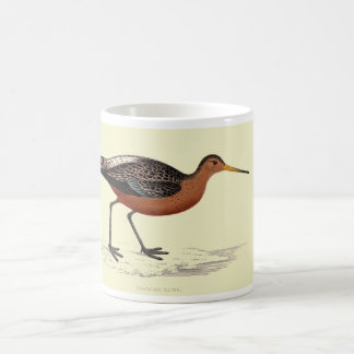 Mug - bar tailed godwit