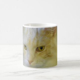 Mug Coffee Pet Maine Coon Cat Bentley