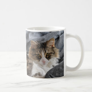 Mug Furry Friend- Fawn / gray long hair Cat.