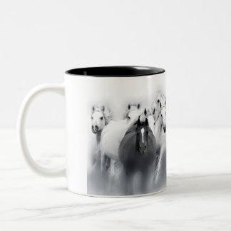 mug home run with arabian horse mares