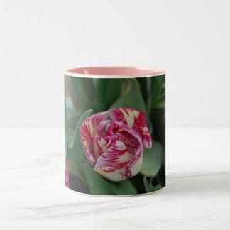 Mug with a tulip