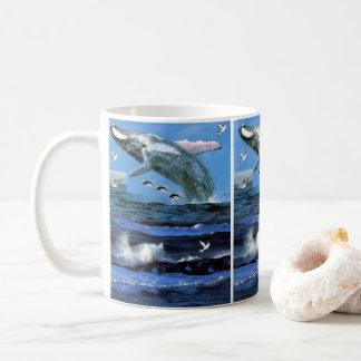 mugs dolphins