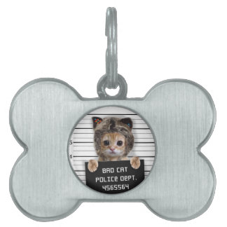 mugshot cat - crazy cat - kitty - feline pet name tag