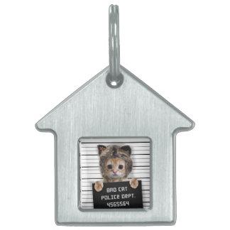 mugshot cat - crazy cat - kitty - feline pet tag