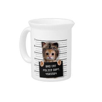 mugshot cat - crazy cat - kitty - feline pitcher