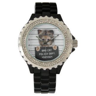 mugshot cat - crazy cat - kitty - feline watch