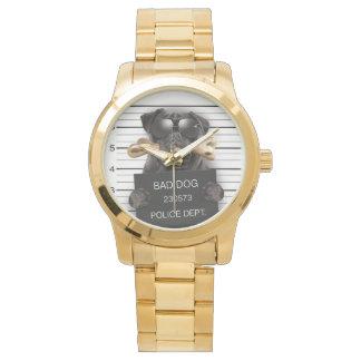 Mugshot dog,funny pug,pug watches