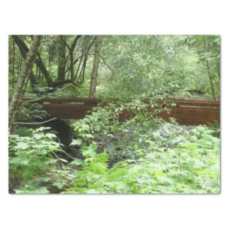 Muir Woods Bridge I Tissue Paper