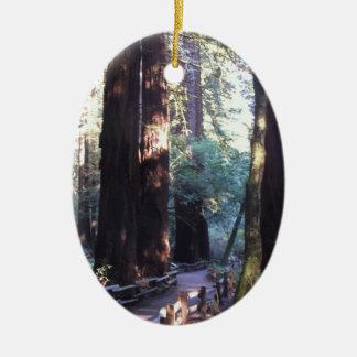 Muir Woods Ceramic Oval Ornament