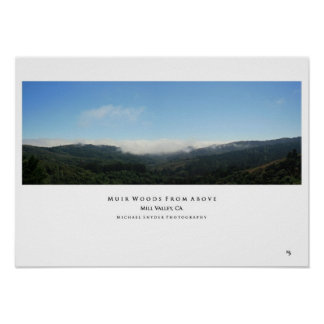 """""""Muir Woods From Above"""" Poster"""